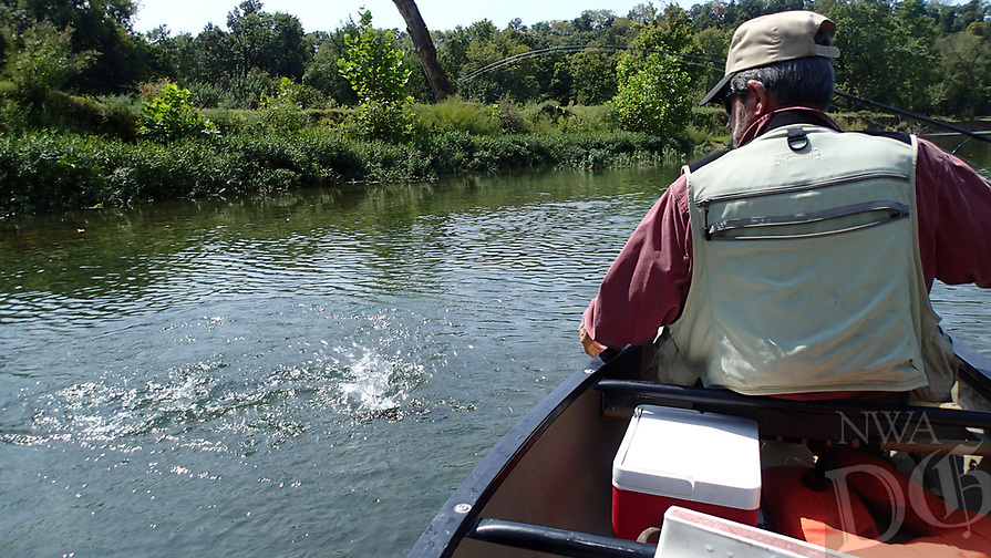 NWA Democrat-Gazette/FLIP PUTTHOFF<br />The thrill is in the fight when catching smallmouth bass on the Elk River and other Ozark streams. Tonkinson brings another to the boat Sept. 8 2017 on the Elk River.