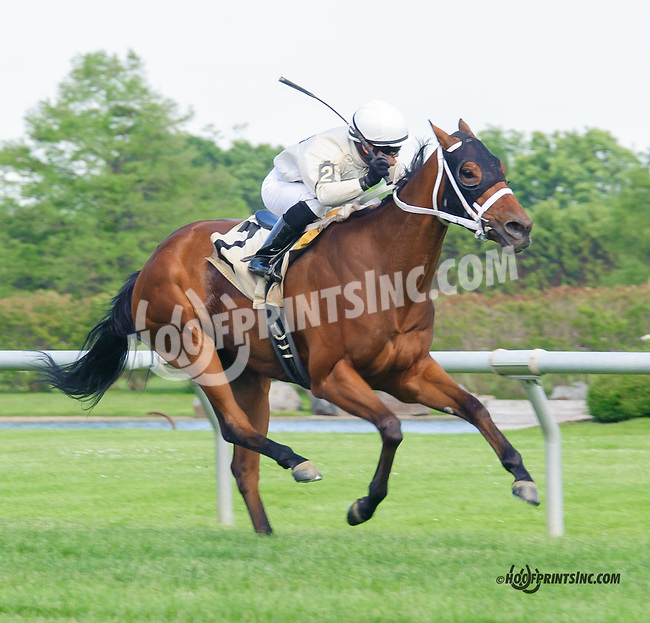 Village Princess winning at Delaware Park  on 5/25/15