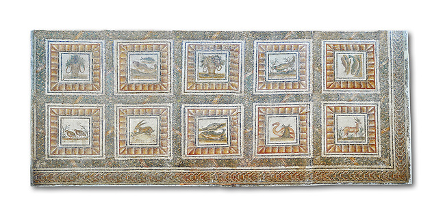 Mid 2nd century AD Roman mosaic depicting Xenia which were gifts of hospitality as well as various animals. From Thysdrus (El Jem), Tunisia.  The Bardo Museum, Tunis, Tunisia. White Background.