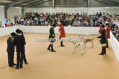 Festival of Hunting Peterborough Uk. Huntsman showing foxhounds judges in bowler hats conferring. 2013.