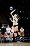Caroline Tassenfoss (18) of the Wake Forest Demon Deacons serves against the Loyola Ramblers in the LJVM Coliseum on September 3, 2016 in Winston-Salem, North Carolina.  The Ramblers defeated the Demon Deacons 3-2.   (Brian Westerholt/Sports On Film)