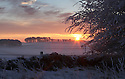 16/01/13..After the coldest night of the winter, the sun rises near Longnor, Derbyshire in The Peak District...All Rights Reserved - F Stop Press.  www.fstoppress.com. Tel: +44 (0)1335 300098.