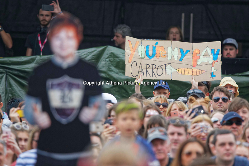"""Pictured: A 'You Are My Fav Carrot"""" banner held in the crowd for Ed Sheeran. Saturday 26 May 2018<br /> Re: BBC Radio 1 Biggest Weekend at Singleton Park in Swansea, Wales, UK."""