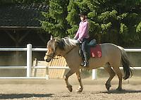 Mädchen beim Reitunterricht auf Ponyhof, Mädchen reitet im Schritt-Tempo auf ihrem Reitpony auf dem Reitplatz, Reiten, Reiterhof, Gestüt
