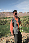 Friendly smiling young man selling fresh dates by the ksar of Tamnougalt, Draa river valley, Morocco