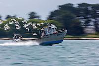 France, Morbihan (56),  Golfe du Morbilhan : Bateau de pêche  // France, Morbihan, Gulf of Morbihan,  Fishing boat