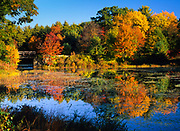 Fall foliage around Clarks Pond in Auburn, New Hampshire USA.