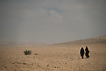 ISRAEL area of Dimona, Negev desert<br />