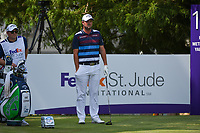 Marc Leishman (AUS) looks over his tee shot on 12 during round 4 of the WGC FedEx St. Jude Invitational, TPC Southwind, Memphis, Tennessee, USA. 7/28/2019.<br /> Picture Ken Murray / Golffile.ie<br /> <br /> All photo usage must carry mandatory copyright credit (© Golffile | Ken Murray)