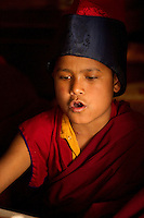 Buddhist student monk chanting during a Losar ceremony in Sikkim, India