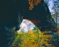 North Arch in the Fall, Big South Fork of the Cumberland River, Big South Fork National River & Recreation Area, Tennessee