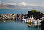 View of Helgrindur Mountains and Arnarstapi Harbor in West Iceland