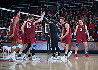 STANFORD, CA - March 2, 2019: Jaylen Jasper, Jordan Ewert, Kyle Dagostino, Eli Wopat, Paul Bischoff at Maples Pavilion. The Stanford Cardinal defeated BYU 25-20, 25-20, 22-25, 25-21.