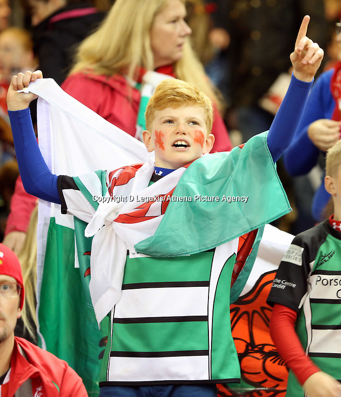 Pictured: A young boy Wales supporter with a flag. Saturday 15 November 2014<br /> Re: Dove Men Series rugby, Wales v Fiji at the Millennium Stadium, Cardiff, south Wales, UK.