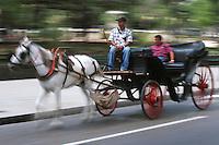 Cuba/La Havane: Voiture à cheval sur le Malecon