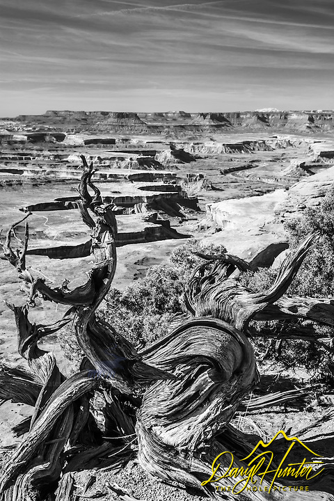 Green River Overlook in Black and White.  Canyonlands National Park, Utah