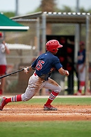 GCL Cardinals Francisco Hernandez (15) at bat during a Gulf Coast League game against the GCL Marlins on August 12, 2019 at the Roger Dean Chevrolet Stadium Complex in Jupiter, Florida.  GCL Marlins defeated the GCL Cardinals 9-2.  (Mike Janes/Four Seam Images)