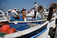 Europe/France/Provence-Alpes-Côte d'Azur/13/Bouches-du-Rhône/Marseille: Marché au poisson sur le Vieux Port  -  Quai des Belges - les pointus des pêcheurs au retour de pêche