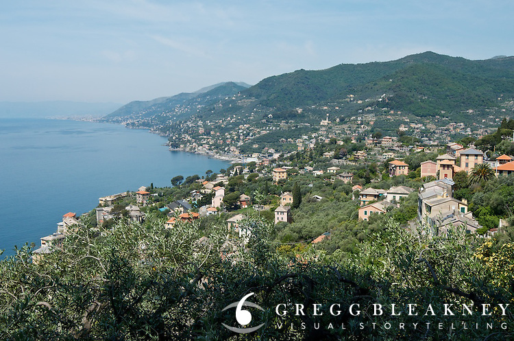 Another view from the seaside road near Rapallo--Stage 4.