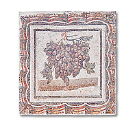 3rd century Roman mosaic panel of black and white grapes. From Thysdrus (El Jem), Tunisia.  The Bardo Museum, Tunis, Tunisia.