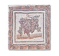3rd century Roman mosaic panel of black and white grapes. From Thysdrus (El Jem), Tunisia.  The Bardo Museum, Tunis, Tunisia.