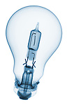 X-ray image of a halogen lightbulb (blue on white) by Jim Wehtje, specialist in x-ray art and design images.