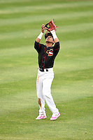 Quad Cities River Bandits shortstop Antonio Nunez (6) during a game against the Burlington Bees on May 9, 2016 at Modern Woodmen Park in Davenport, Iowa.  Quad Cities defeated Burlington 12-4.  (Mike Janes/Four Seam Images)