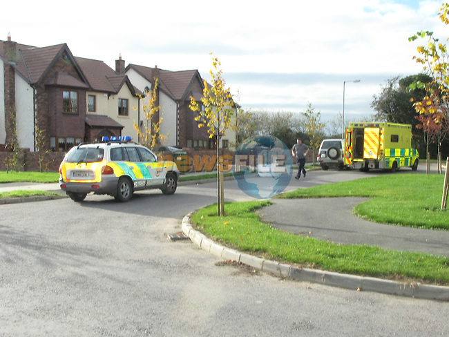 The scene of the shooting in the Belfrey in Duleek Co Meath. The Ambulance service remove the victom from the scene before the Garda arrive. the scene shows the blood strown all over the groud from where his car was parked into the house.. Photo: Newsfile/Fran Caffrey.