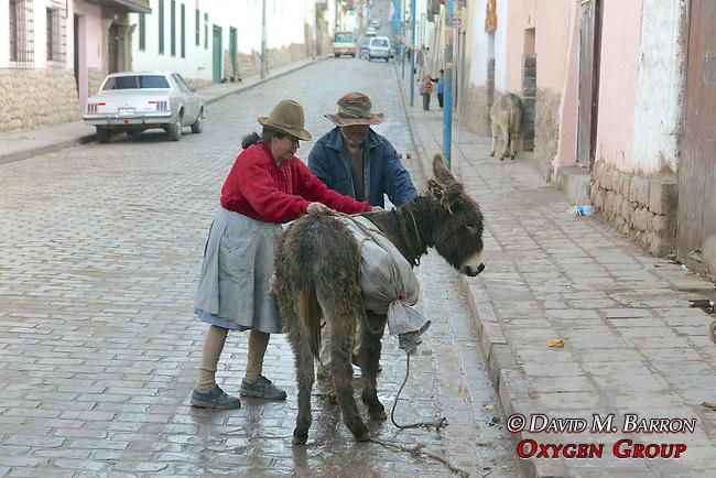 Couple With Donkey