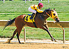 Wanna Follow Me winning at Delaware Park on 8/27/16
