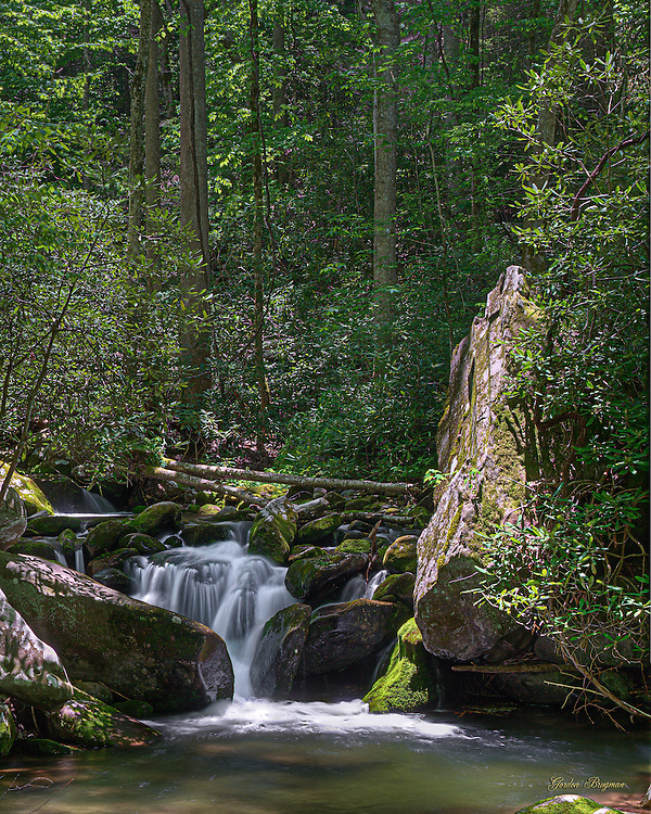 The small falls and pool near the Ephraim Bales homestead along the Roaring Fork Motor Nature Trail in the Great Smoky Mountains National Park.