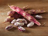 Fresh Borlotti beans in their pods