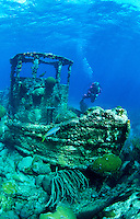 Tugboat Wreck- Curacao. Actually an old pilot boat