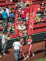 Edecanes de Red Cola.<br /> Partido de beisbol de la Serie del Caribe con el encuentro entre los Alazanes de Gamma de Cuba contra los Criollos de Caguas de Puerto Rico en estadio de los Charros de Jalisco en Guadalajara, M&eacute;xico, Martes 6 feb 2018. <br /> (Foto: AP/Luis Gutierrez)