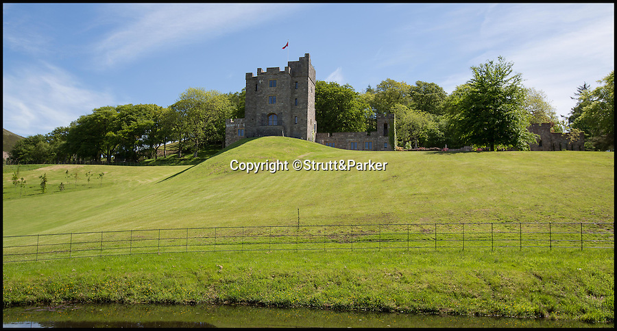 BNPS.co.uk (01202 558833)<br /> Pic: Strutt&Parker/BNPS<br /> <br /> Every man's home is his castle - but one lucky buyer could get their hands on this modern fortress complete with tower and fire-breathing dragon for a whopping £4 million.<br /> <br /> From the outside Castell Gyrn, which sits in the rolling countryside in Denbighshire, North Wales, looks the part of a 200-year-old citadel, but it is actually one of the country's youngest castles at just 39 years old.<br /> <br /> Unlike its ancient counterparts, the contemporary stronghold comes complete with draught exclusion, underfloor heating and double glazing.<br /> <br /> It also has the modern comforts of a cinema room, a library and a butler's pantry, as well as permission to add an extension for leisure facilities including an infinity swimming pool.