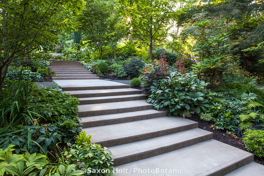 Stairway through mixed borders on hill in Bellevue Botanical Garden