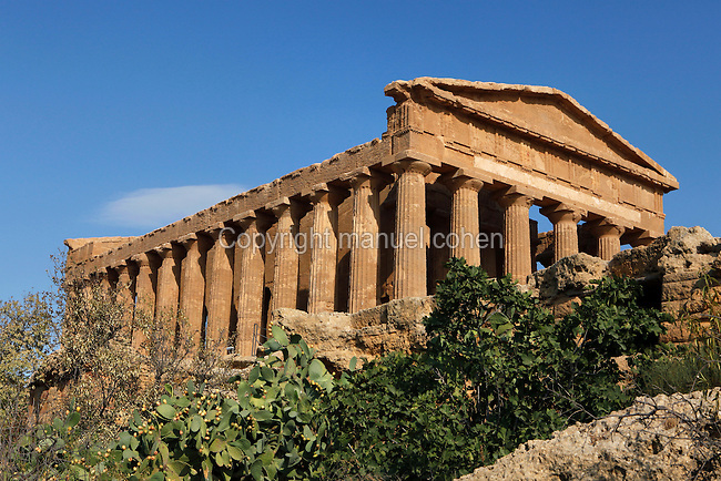 View from below of the Temple of Concord, 5th century BC, Agrigento, Sicily, Italy,  pictured on September 11, 2009, in the morning. Well preserved owing to its 6th century AD conversion to a church, the Temple of Concord is a typical example of optical correction whose tapering columns create the illusion of a perfectly aligned building. Its frieze consists of alternating triglyphs and metopes, and the pediment is undecorated. The Valley of the Temples is a UNESCO World Heritage Site. Picture by Manuel Cohen.