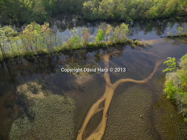 Clear water from Spring Branch feeds the Choptank between Greensboro and Denton.