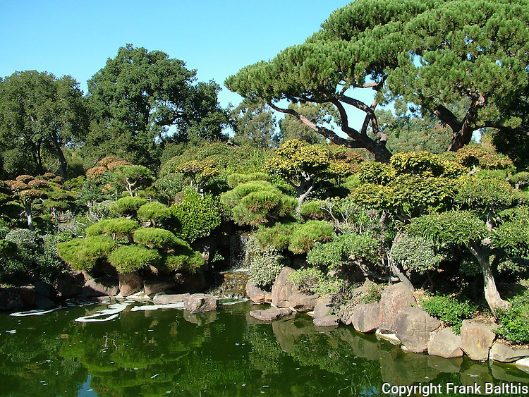 Japanese Garden in Hayward