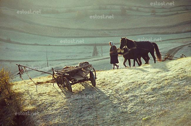ROMANIA, 1981..Plowing in the mist..ROUMANIE, 1981..Labours dans la brume..© Andrei Pandele / EST&OST