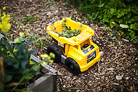 A toy truck is seen in a community garden organized to produce organic food at Brooklyn in New York,  May 10, 2013, Photo by Eduardo Munoz Alvarez / VIEWpress.
