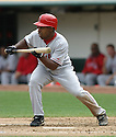 Chone Figgins, of the Los Angeles Angels , during their game against the Oakland A's  on April 23, 2006 in Oakland...A's win 4-3..Rob Holt / SportPics