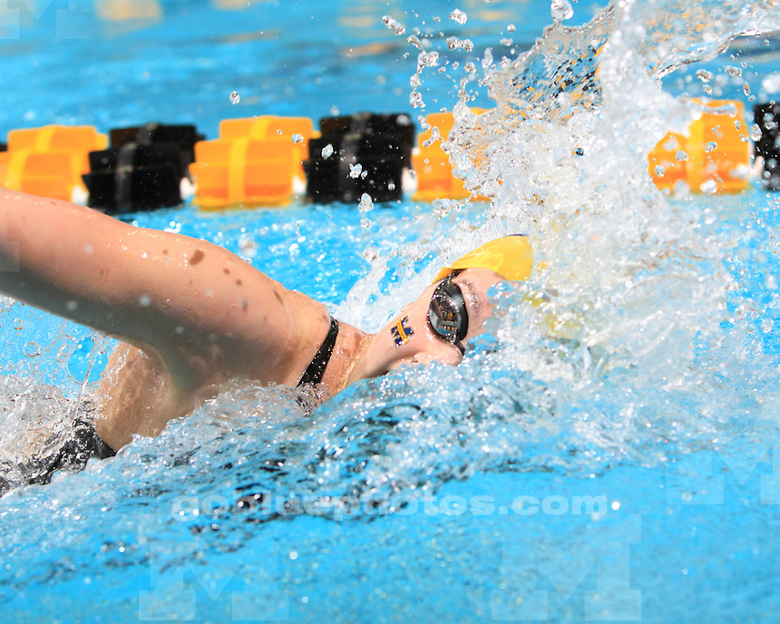 The University of Michigan's women's swimming and diving team competes in the 2012 Big Ten Championships in Iowa City, Iowa, on February 16, 2012.