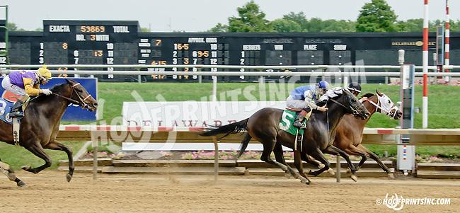 Alaco Castle winning at Delaware Park on 7/16/14