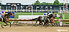 Alaco Castle winning at Delaware Park on 7/16/14