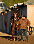 OCT 29: Breeders' Cup Juvenile Fillies entrant K P Dreamin, trained by Jeff Mullins, at Santa Anita Park in Arcadia, California on Oct 29, 2019. Evers/Eclipse Sportswire/Breeders' Cup