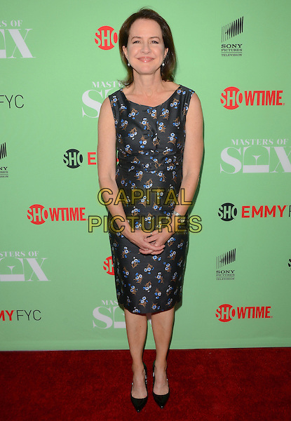 29 April 2014 - North Hollywood, California - Michelle Ashford. Showtime's &quot;Master of Sex&quot; special screening and panel discussion held at the Leonard H. Goldenson Theater in North Hollywood, Ca. <br /> CAP/ADM/BT<br /> &copy;Birdie Thompson/AdMedia/Capital Pictures