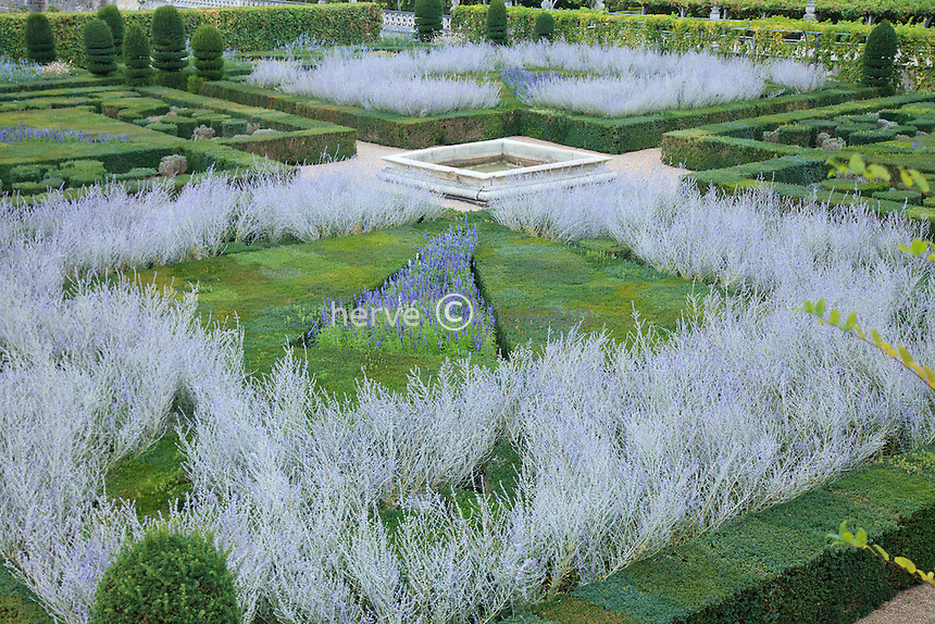 "France, Jardins du château de Villandry, au premier plan le ""Jardin dornement 2e salon"" (topiaires de buis et ifs, sauges, Perowskia) // France, Gardens of Villandry castle, in the foreground the ""Music Garden"" (topiary yews and boxwood, salvia, Perowskia)"