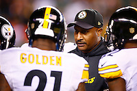 Defensive backs coach Carnell Lake of the Pittsburgh Steelers speaks to his players against the Cincinnati Bengals during the Wild Card playoff game at Paul Brown Stadium on January 9, 2016 in Cincinnati, Ohio. (Photo by Jared Wickerham/DKPittsburghSports)