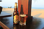Close up of cold glass and bottle of Lion lager beer, Sri Lanka, Asia